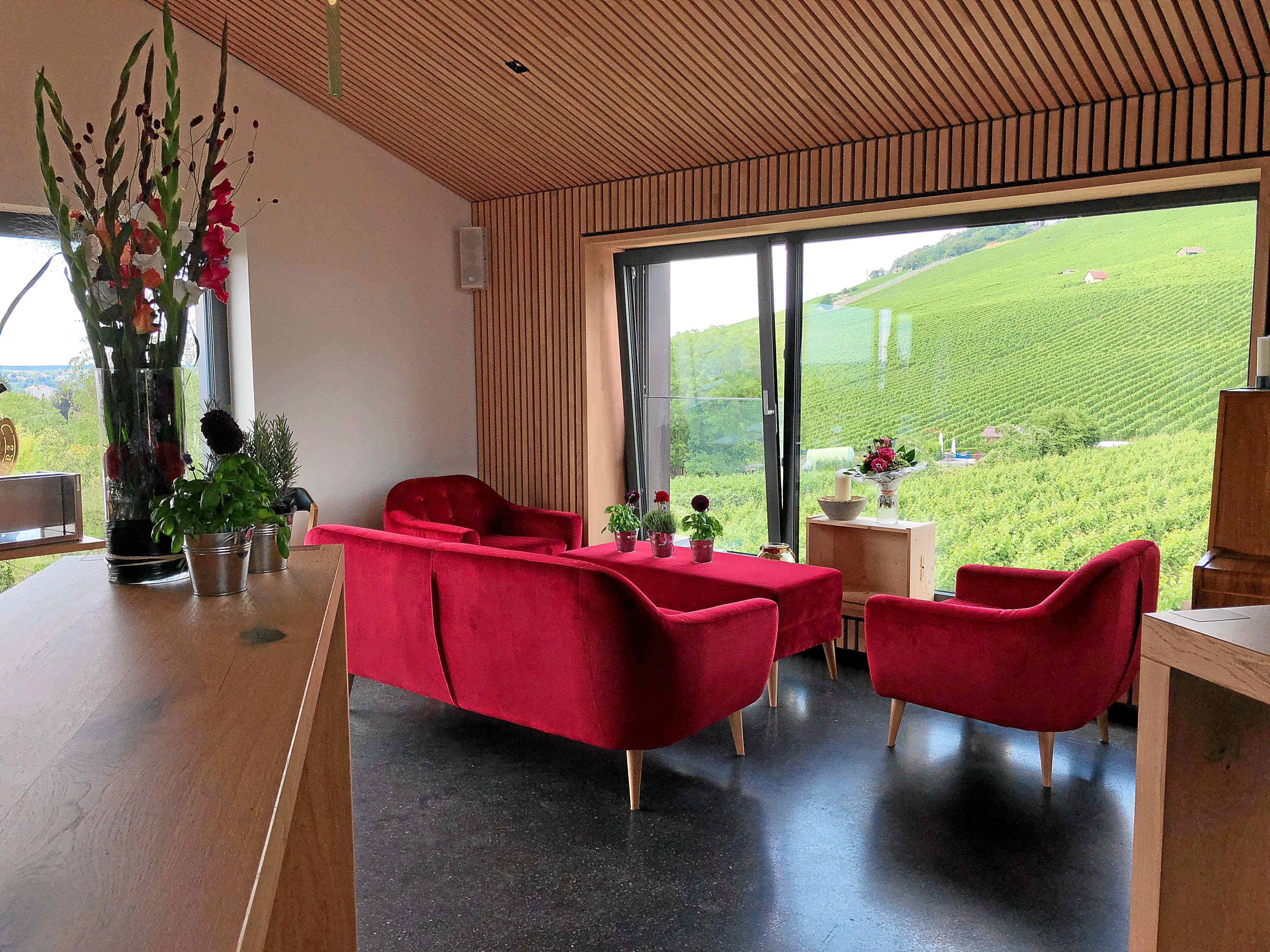 Fenster zum Wartberg - WeinChilout