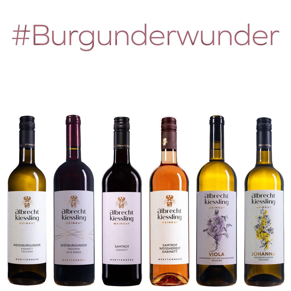 Probierpaket - Burgunderwunder #Pinot